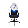 DXRacer Racing OH/RZ32/WNB VEGA Squadron Special Edition в Украине